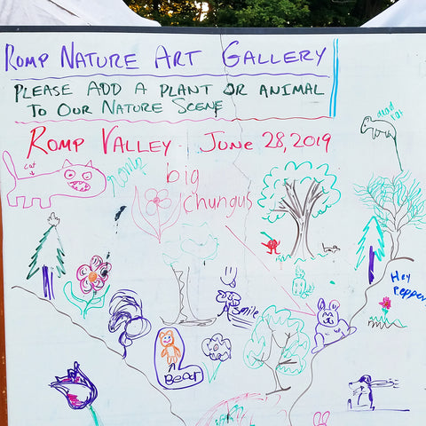 Community Nature Art Gallery at CACE booth at Romp Festival 2019