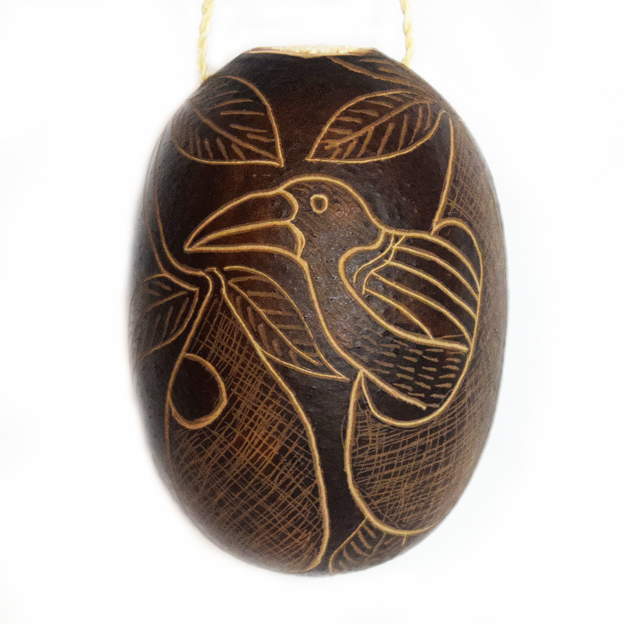 Cacique and Oropendola Bird Calabash Christmas tree ornament and hand rattle