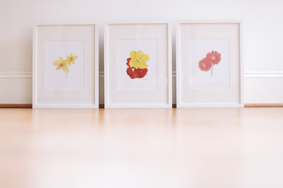 Unique Flower Wall Prints (Framed)