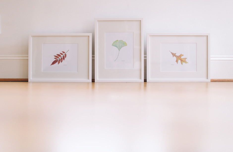 Leaf Wall Prints (Framed) – Falling Leaf Card Co