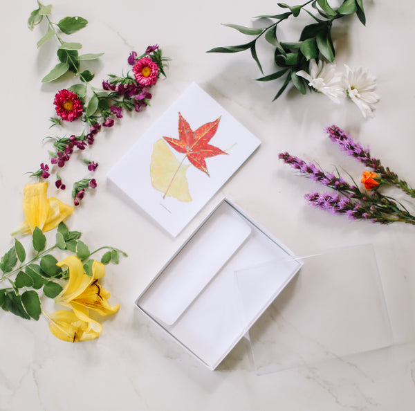 Blank Greeting Cards, Invitations & Envelopes