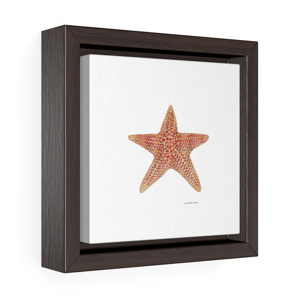 Canvas Was Print - Sea Star- Square Framed Premium Gallery Wrap Canvas - Falling Leaf Card Co.