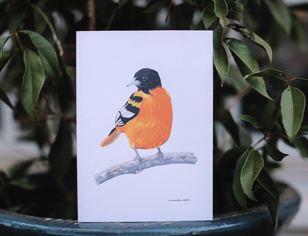 Oriole Greeting Card (Blank) - Falling Leaf Card Co.