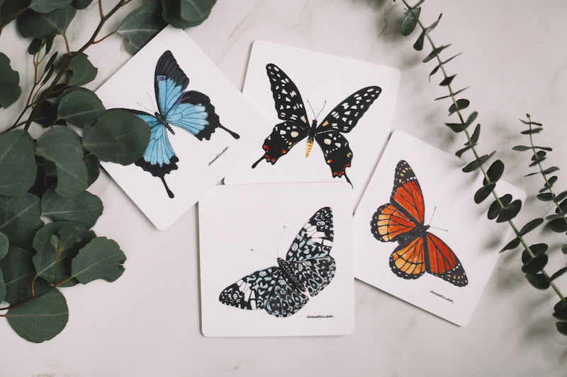 Butterfly Drink Coaster Set - Falling Leaf Card Co.