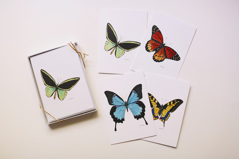 Teacher Appreciation Gift - Boxed Butterfly Card Set - Falling Leaf Card Co.