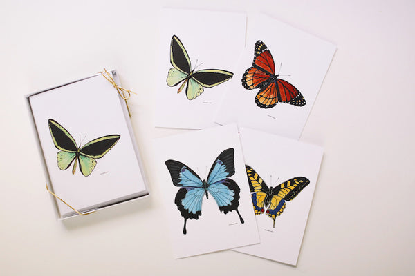 Butterfly Note Card Set (Blank) - Falling Leaf Card Co.