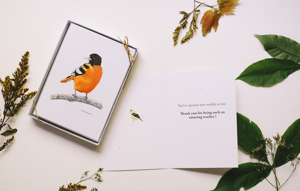 Teacher Appreciation Day Gift - Wild Bird Card Set - Falling Leaf Card Co.