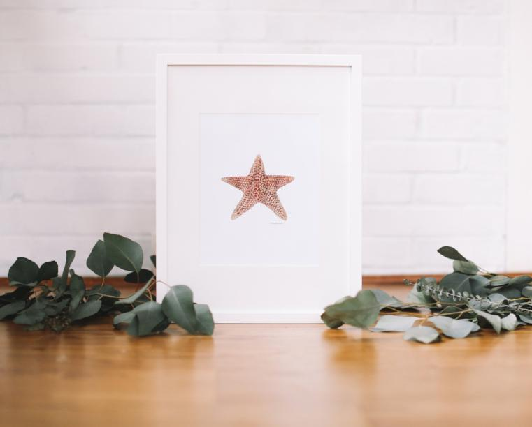 Starfish Wall Art (Framed) - Falling Leaf Card Co.