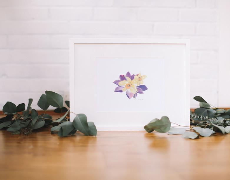 Daffodil & Water Lily Wall Art (Framed) - Falling Leaf Card Co.