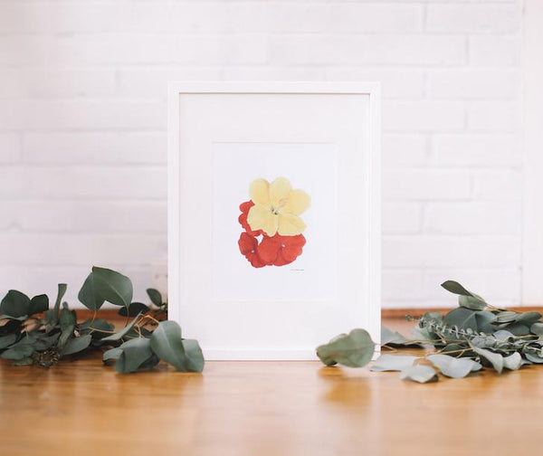 Hibiscus & Impatiens Wall Art (Framed) - Falling Leaf Card Co.