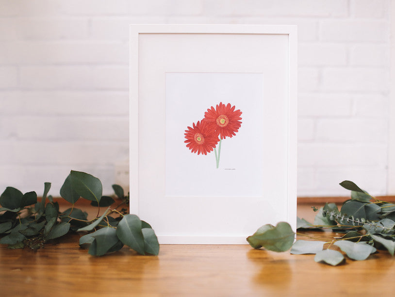 African Daisy Wall Art (Framed) - Falling Leaf Card Co.