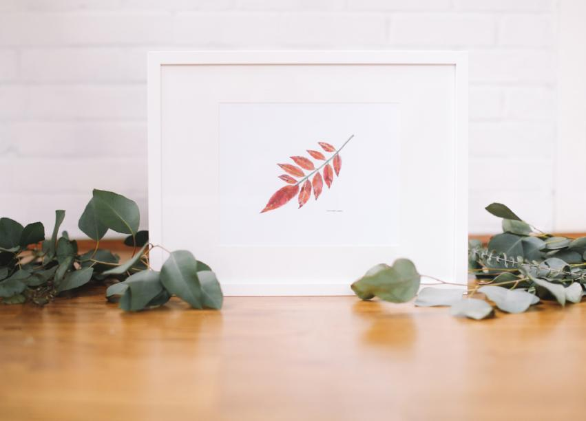 Sumac Leaf Wall Print (Framed) - Falling Leaf Card Co.