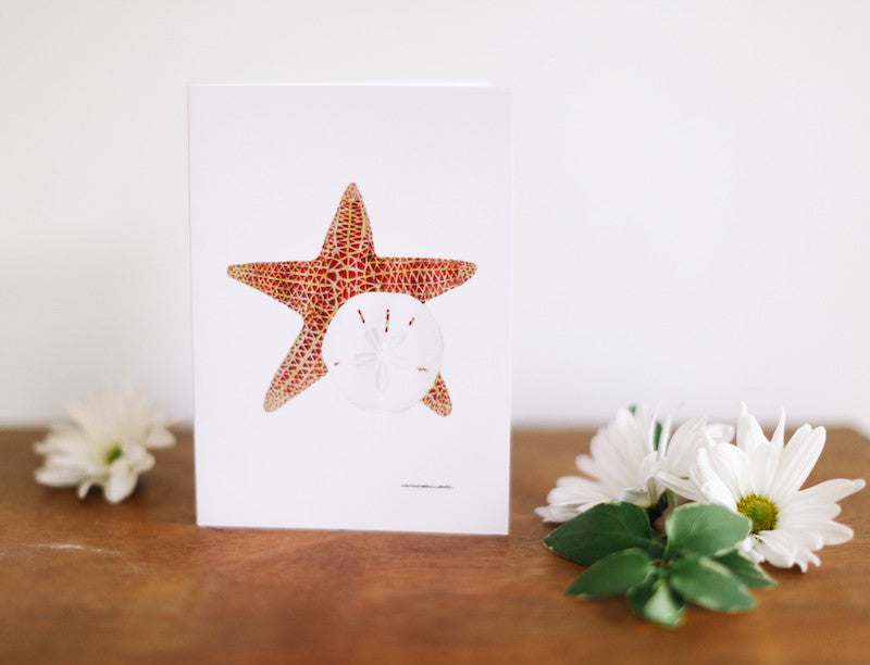 Starfish & Sand Dollar Note Card (Blank) - Falling Leaf Card Co.