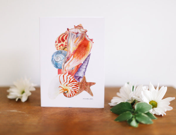 Unique seashell greeting cards falling leaf card co.