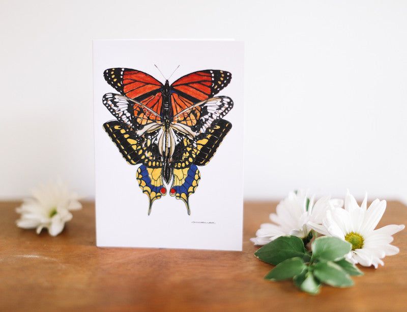 Monarch, Swallow Tail & Lace Butterfly Note Card (Blank) - Falling Leaf Card Co.