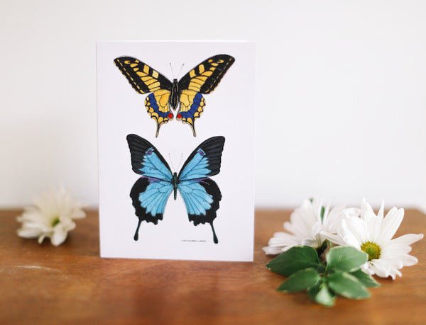 Yellow Swallow Tail & Blue Butterfly Note Card (Blank) - Falling Leaf Card Co.