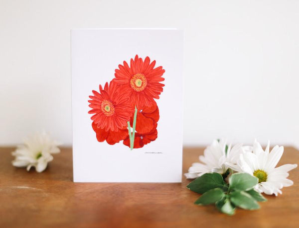 African Daisy & Impatiens Greeting Card (Blank) - Falling Leaf Card Co.