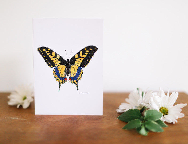 Yellow Swallow Tail Butterfly Note Card (Blank) - Falling Leaf Card Co.