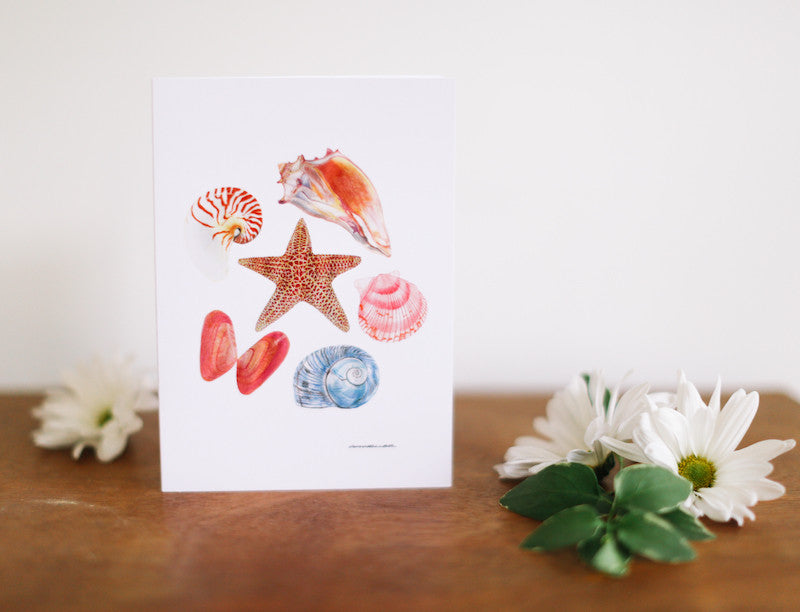 Seashell Pentagon Note Card (Blank) - Falling Leaf Card Co.