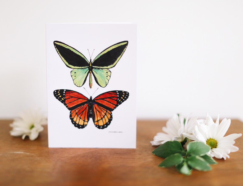 Green & Orange Butterfly Cards (Blank) - Falling Leaf Card Co.