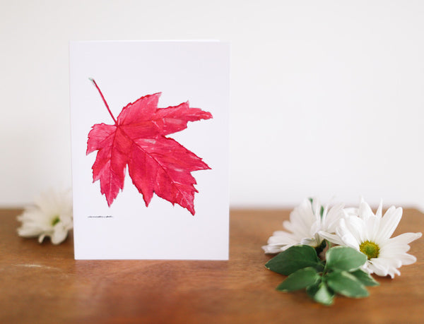 Red Maple Leaf Note Card (Blank) - Falling Leaf Card Co.