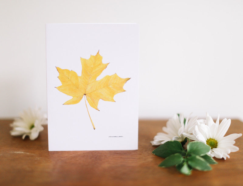 Yellow Maple Leaf Note Card (Blank) - Falling Leaf Card Co.
