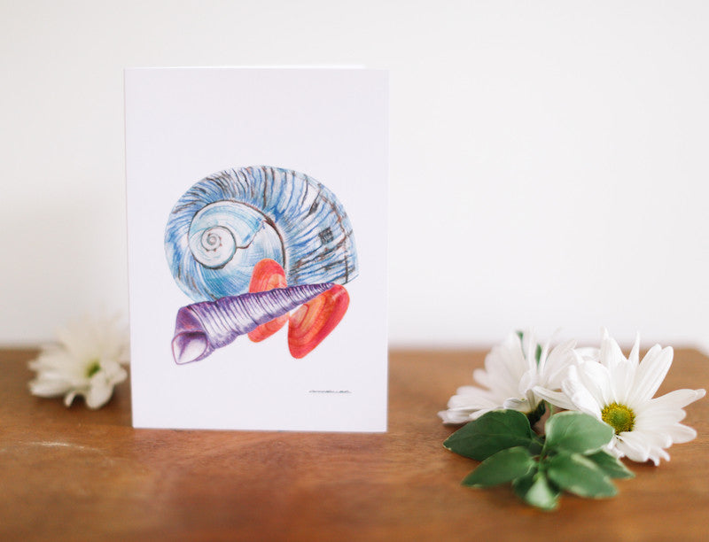 Blue Conch Combo Note Card (Blank) - Falling Leaf Card Co.