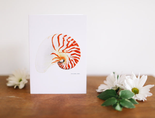 Chambered Nautilus Greeting Card (Blank) - Falling Leaf Card Co.