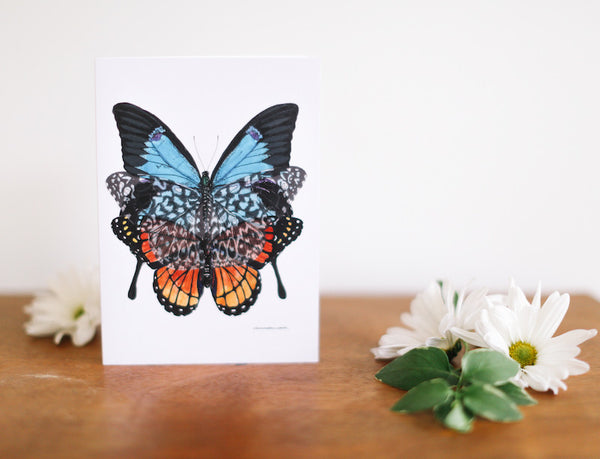 Blue, Monarch & Lace Butterfly Greeting Card (Blank) - Falling Leaf Card Co.