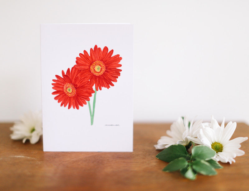 African Daisy Greeting Card (Blank) - Falling Leaf Card Co.