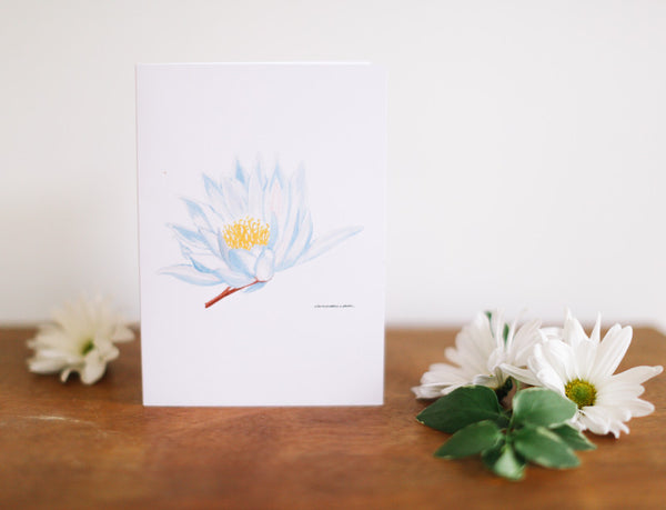 Blue Water Lily Birthday Card (Blank) - Falling Leaf Card Co.