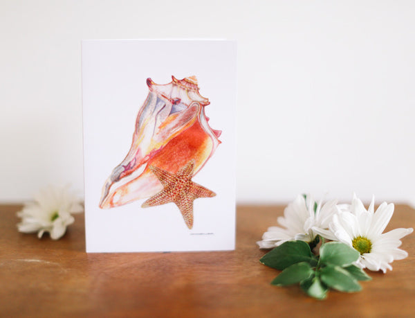 Conch & Sea Star Note Card (Blank) - Falling Leaf Card Co.