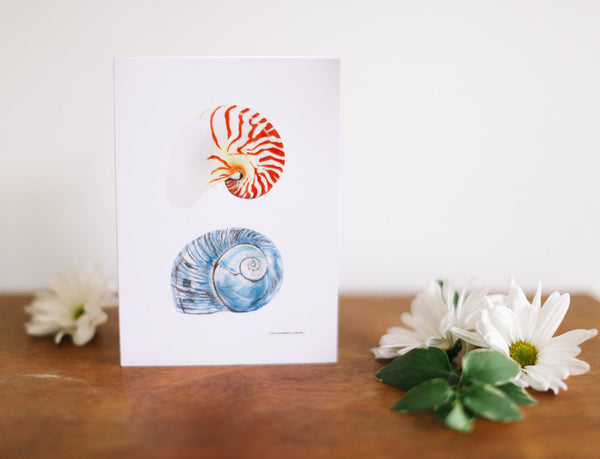 Nautilus & Blue Conch Greeting Card (Blank) - Falling Leaf Card Co.