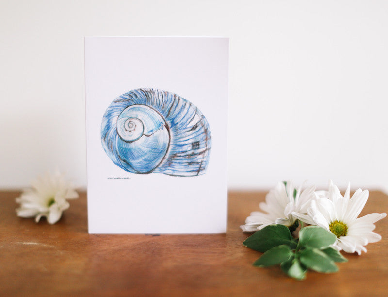 Blue Conch Greeting Card (Blank) - Falling Leaf Card Co.