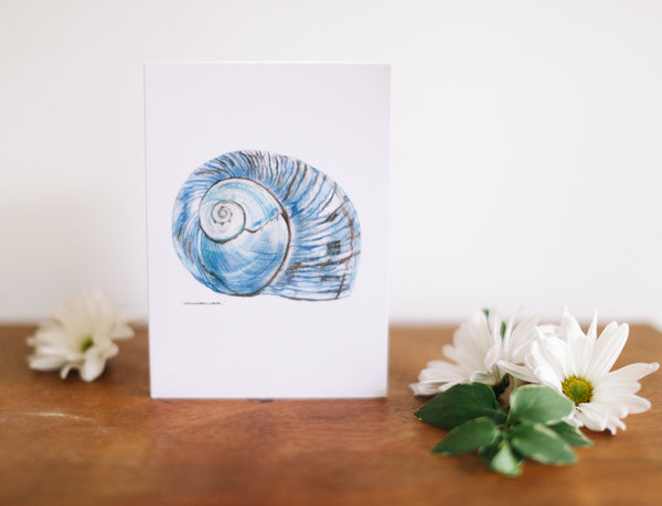 Blue Conch Father's Day Card - Falling Leaf Card Co.