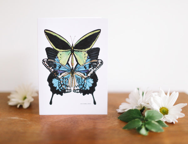 Blue, Green & Lace Butterfly Note Card (Blank) - Falling Leaf Card Co.