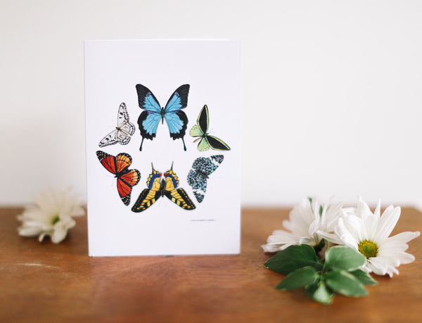 Butterfly Hexagon Note Card (Blank) - Falling Leaf Card Co.