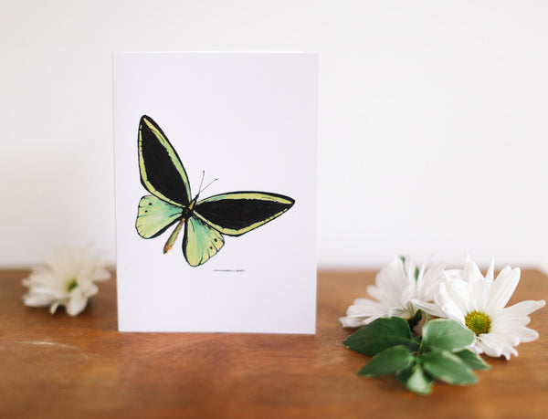 Green Butterfly Note Card (Blank) - Falling Leaf Card Co.