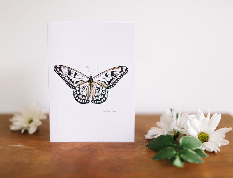 White Lace Butterfly Greeting Card (Blank) - Falling Leaf Card Co.