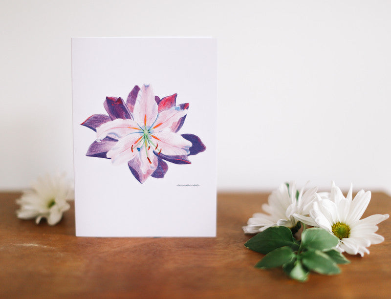Water Lily Sympathy Cards - Falling Leaf Card Co.