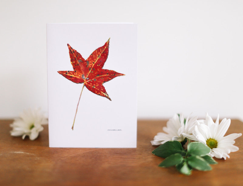 Sweet Gum Leaf Sympathy Card - Falling Leaf Card Co.