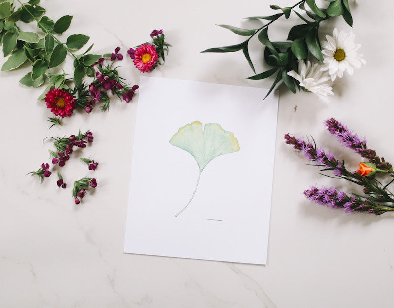 Ginkgo Leaf Wall Art - Falling Leaf Card Co.
