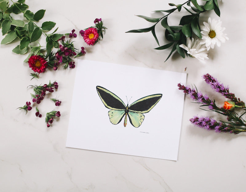 Green Butterfly Wall Art - Falling Leaf Card Co.