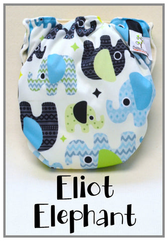 Bottombumpers Size 2 Aplix Cloth Diaper - Eliot