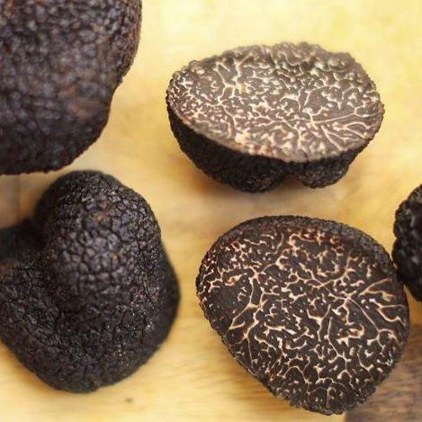 Fresh Black Winter Australian Truffles - Tuber Melanosporum
