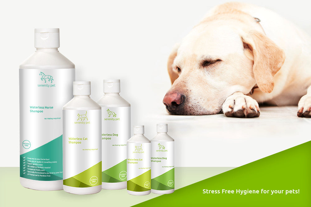 No Rinse Pet Products