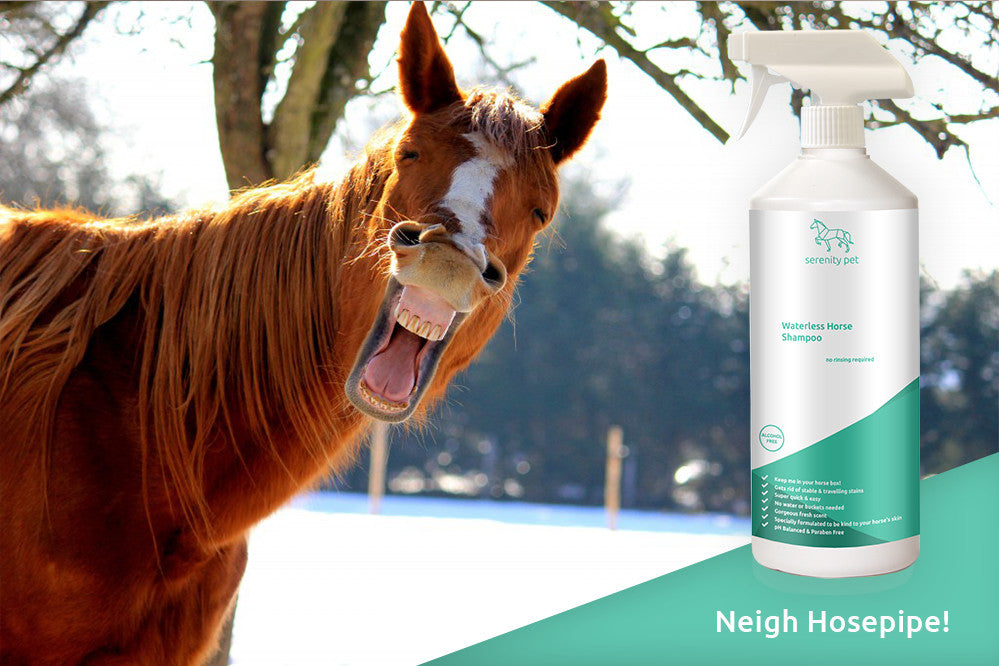 Clean up your horse without water