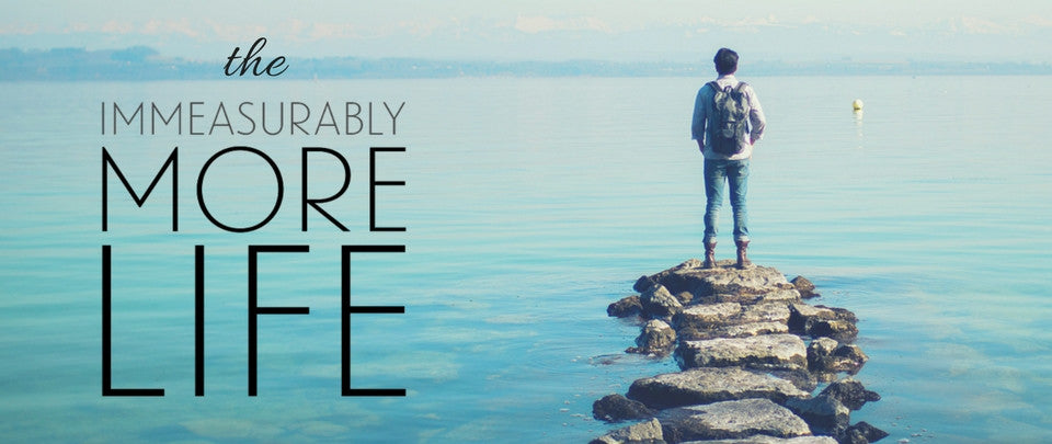The Immeasurably More Life