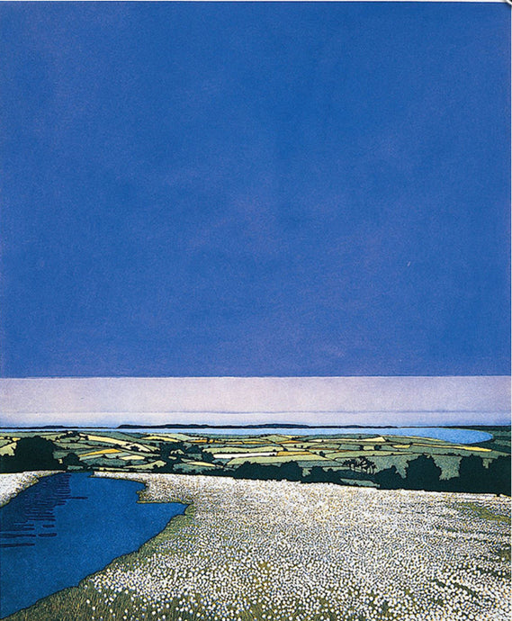 Cotton Blue by Phil Greenwood