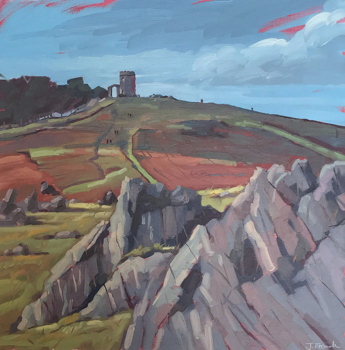 Bradgate Rocks by Jane French